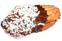 Italian style cookies Jelly finger w/white sprinkles.